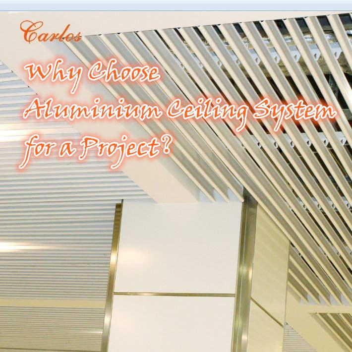 Carlos Array image33